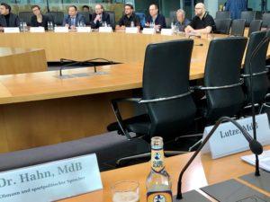 Anhörung im Sportauschuss: Rechtsextrimismus im Fußball